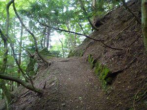 登り_落ち葉2