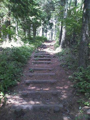 登り_木段
