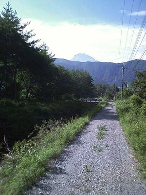 下り_砂利の林道