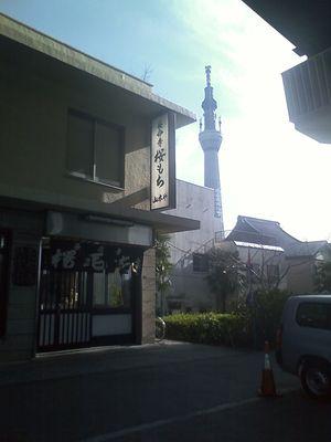 24_長命寺の桜餅とスカイツリー