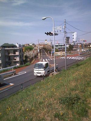 PAP_0243