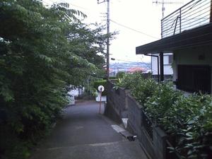 Ca3b0154